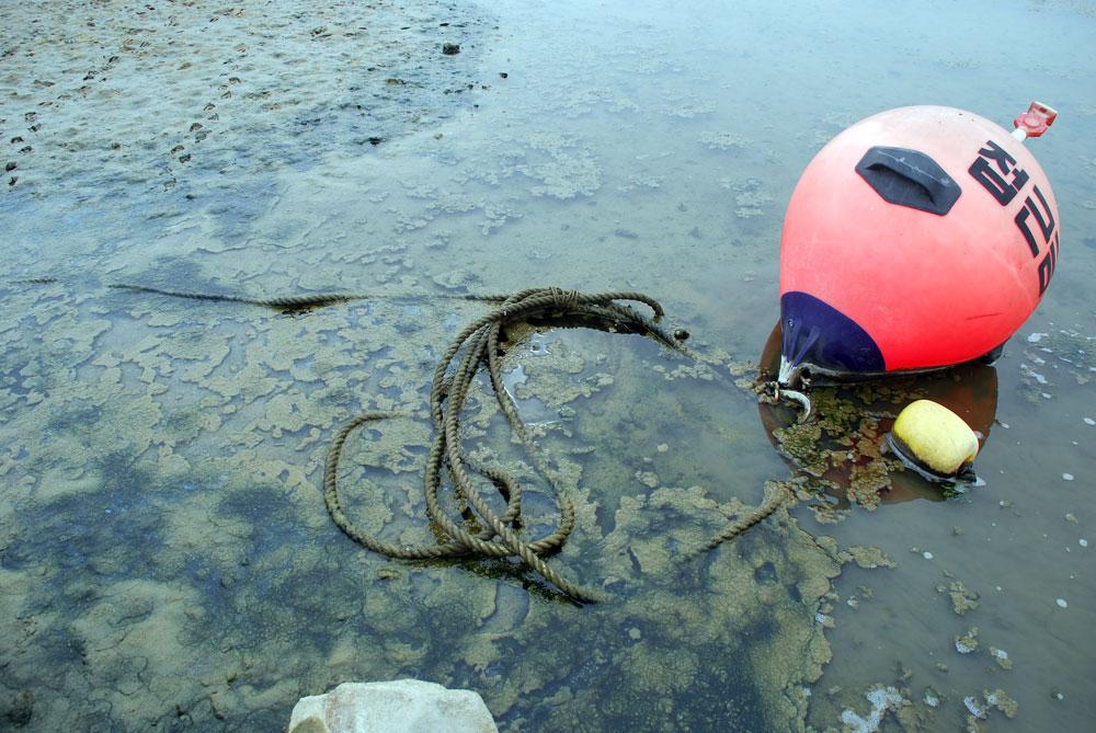 수자원공사가 관리하는 구역임을 알리는 부표도 강바닥에 나뒹굴고 있다.