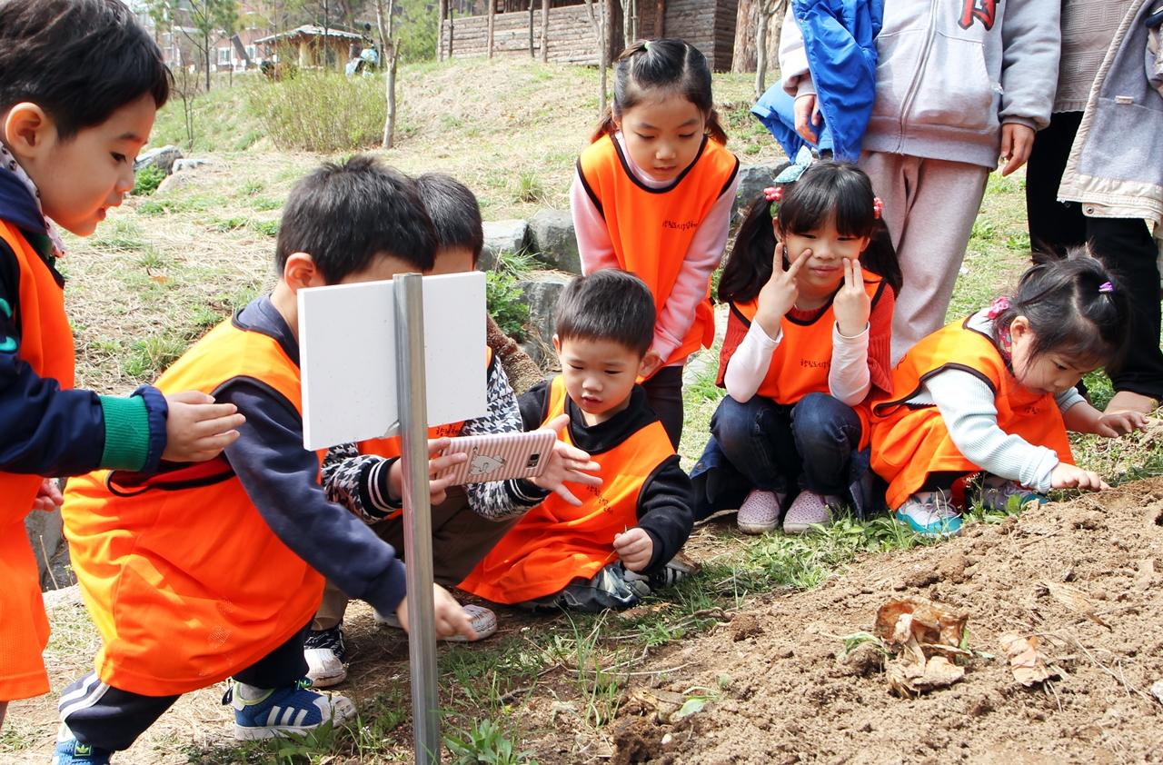 두꺼비와 놀고 있는 어린농부들.