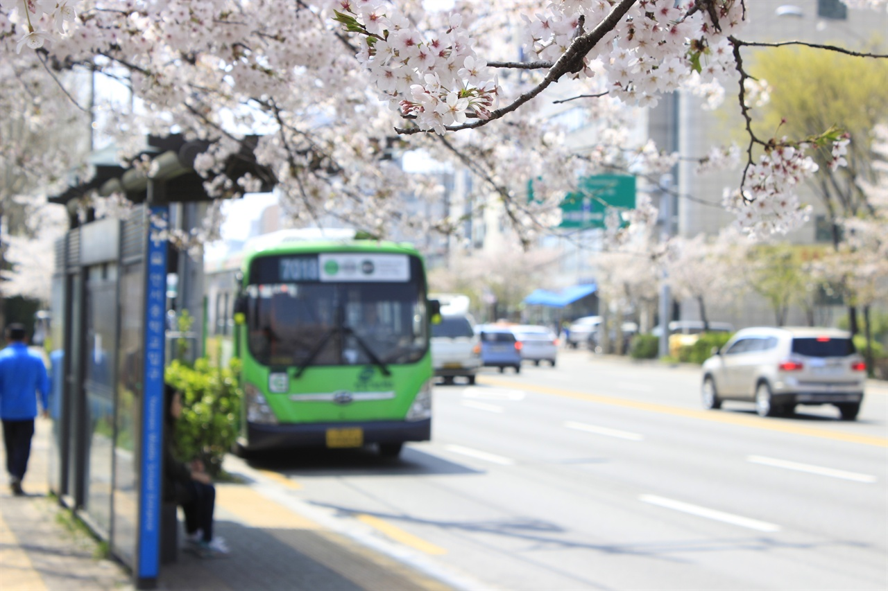 꽃피는 봄인데, 서울특별시의 장거리 버스 이용객에게는 잔혹한 봄이 되었다. 사진은 와산교.