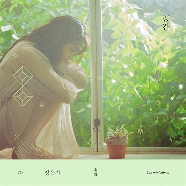 """최근 발매된 에이핑크 정은지의 두번째 EP <공간> 표지. 음반에는 """"Mini Album""""으로 표시되어 있지만 이는 해외에선 사용하지 않는 한국식 표현이다."""