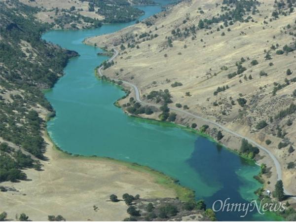 미국의 클라마스강이 댐이 건설되면서 녹조로 녹색강이 됐다.