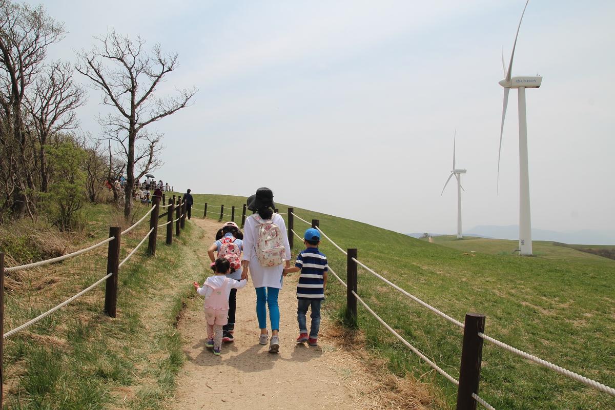 대관령 삼양목장, 바람의 언덕을 오르는 가족들의 뒷모습이 곱다.