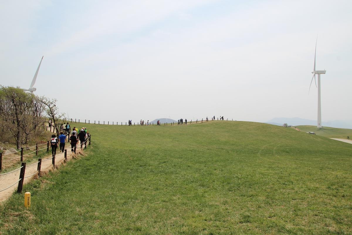 거대한 풍력발전기가 있는 바람의 언덕 푸른 초원이 멋지다.