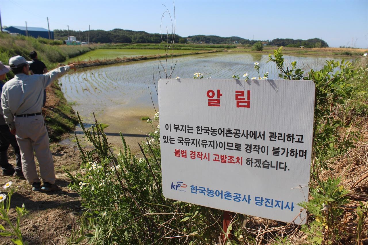 당고지구 유지 앞 표지판 농지전용하고 있는 당고지구 현장. 김영곤 선생이 설명하고 있다.