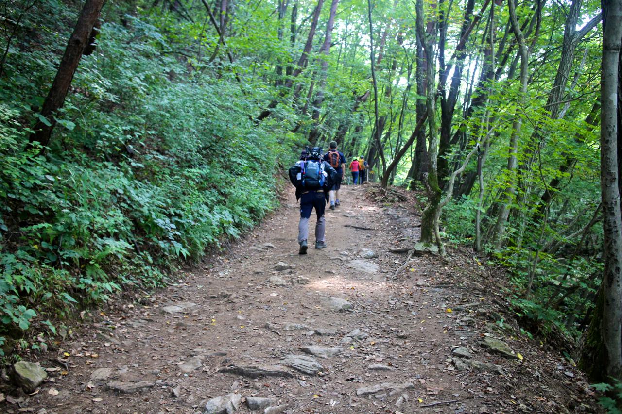 주말에 하루 시간 내서 산에 놀러온 사람 같은 기분. 오늘은 그들도 걷고 우리도 걷는다. 오늘만큼은 그들과 다르지 않아도 된다.