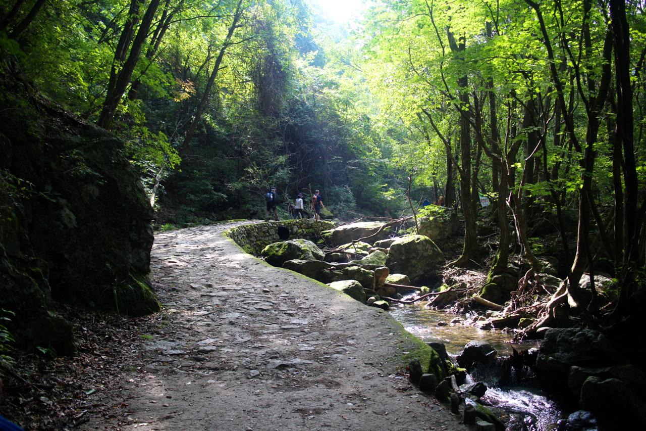 등산복과 햇볕을 가리는 모자, 등산 스틱, 적당한 크기의 등산 배낭을 입고 걷는 사람들. 걷는 사람은 늘 우리 뿐이었는데, 산에 오니 다른 사람들도 걷고있다.