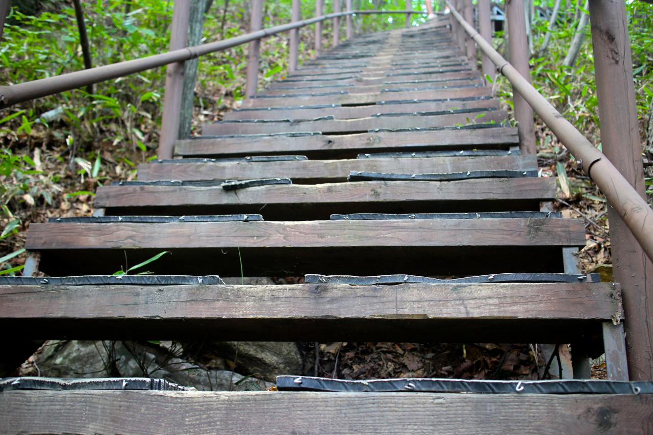 나는 고개를 들고 사다리병창길로 이어지는 계단을 가늠해봤다. 쉼표 하나 없는 가파른 계단길이 우리를 내려다보고 있었다.