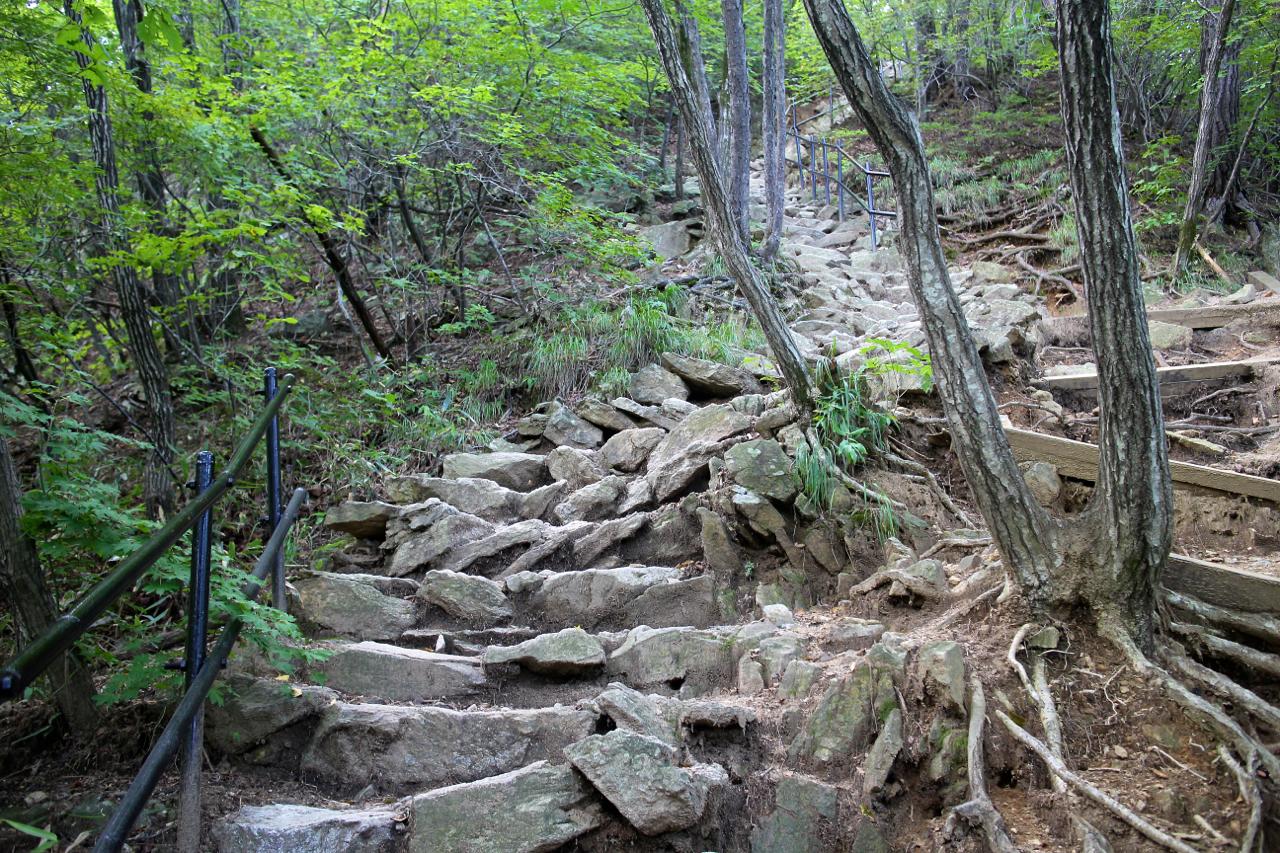 죽을 힘을 다해 나무 계단길을 다 올랐다. 바위로 엉성하게 이어진 다른 종류의 계단길이 이어졌다.