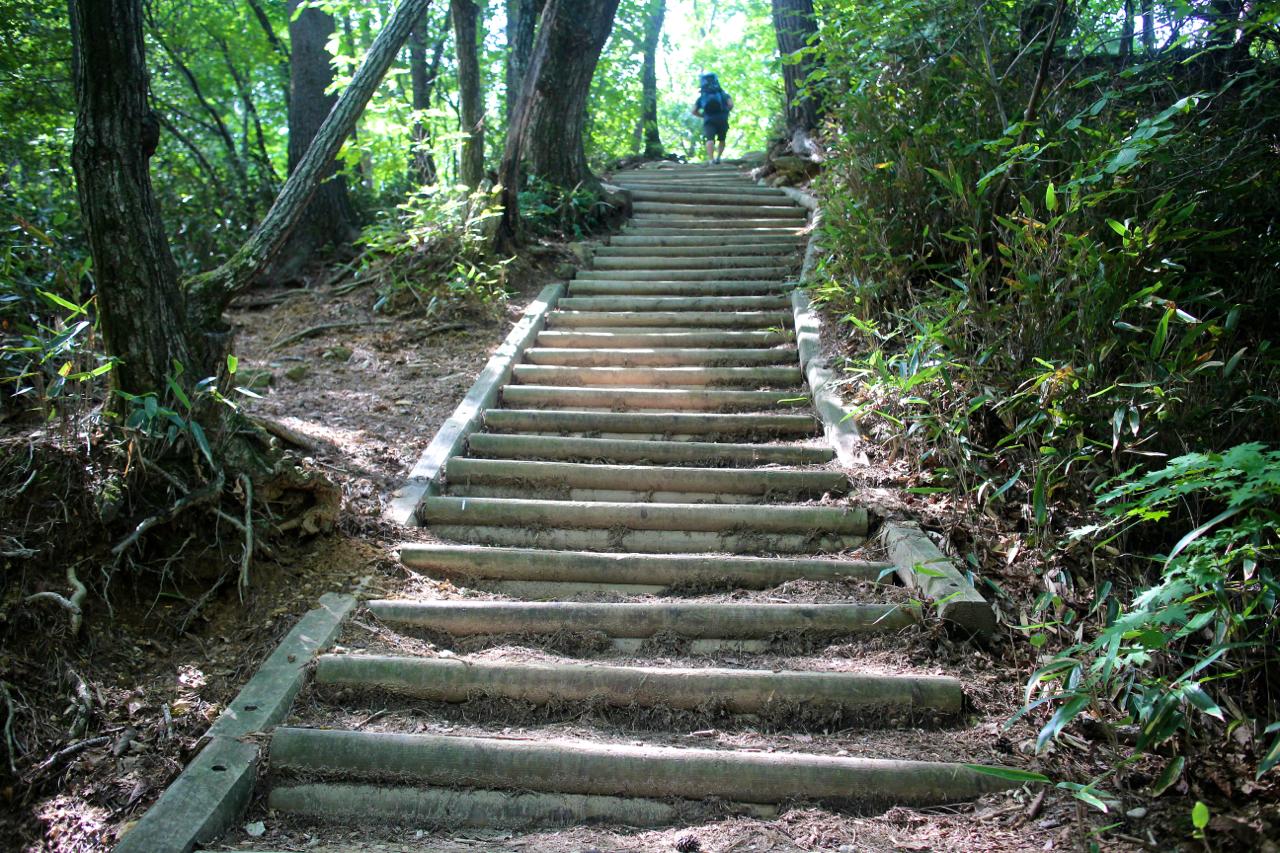평지가 조금 나오는가 싶더니, 얼마 못가 다시 계단길이다. 그렇게 두 시간을 올랐다.