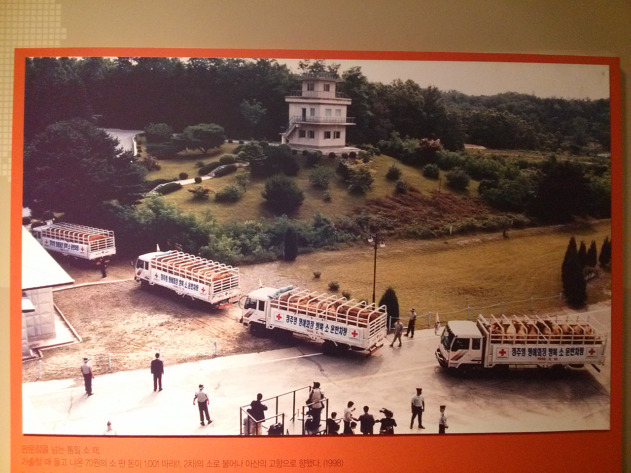 소떼 방북 장면. 서울아산병원의 아산기념전시실에서 찍은 사진.