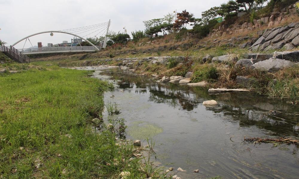 금산군은 수 개월 전 지역환경단체의 민원제기에도 아무런 조치를 하지 않고 있다.