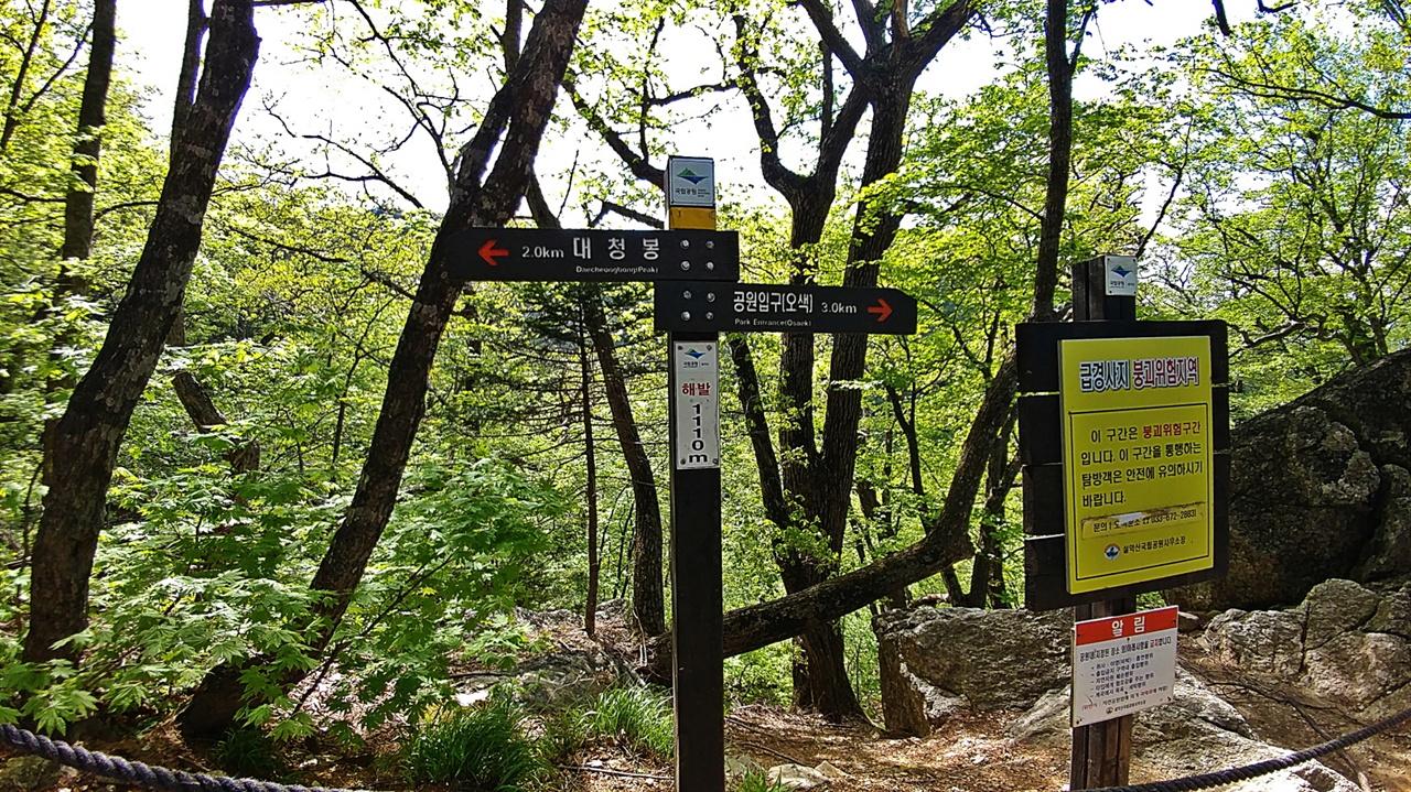 대청봉 2km 이정표 설악폭포교에서 물을 받고 간식을 한 뒤 잠시 급경사를 오르면 만나게 되는 이정표다. 이제부터 짧게 오르고 잠시 평지를 걷기를 몇 번 반복하다보면 대청봉 1.3km 지점의 쉼터에 다다를 수 있다. 이제부터 나무의 종류가 현저히 달라지며, 아고산식생대를 구성하는 잣나무와 분비나무들이 많이 눈에 들어온다.