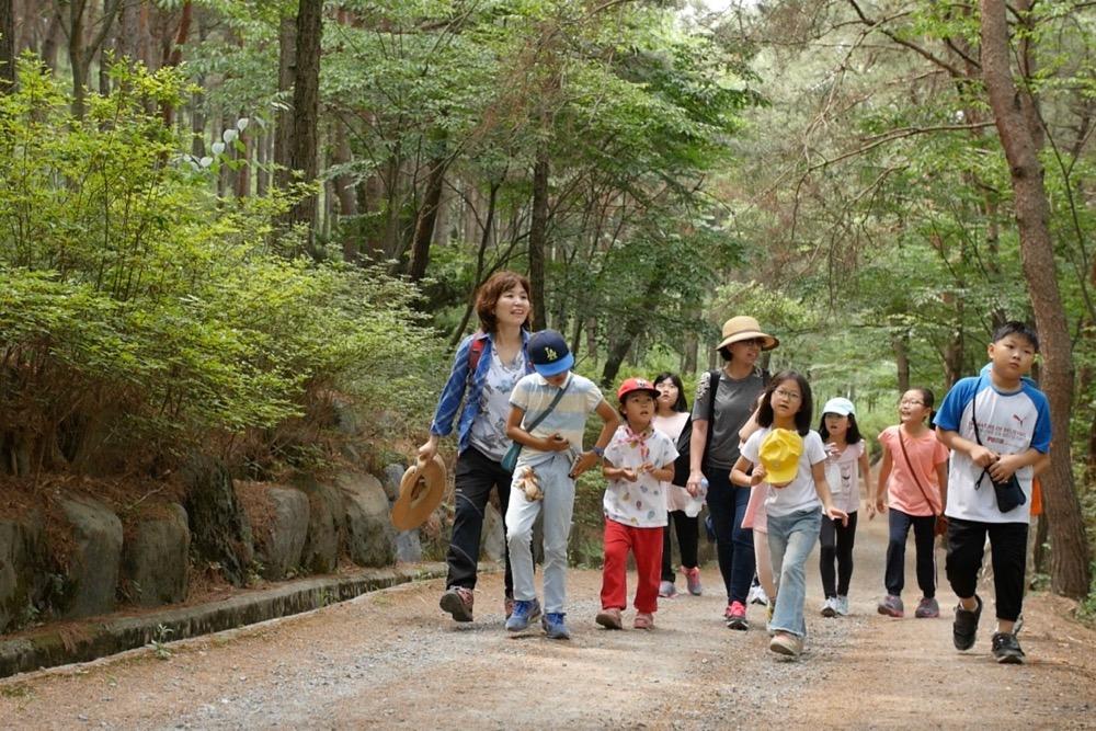 우산성 숲놀이 학교 지난 24일 충남 청양군에서 우산성 숲놀이 학교가 열렸다. 숲으로 걸어가는 아이들