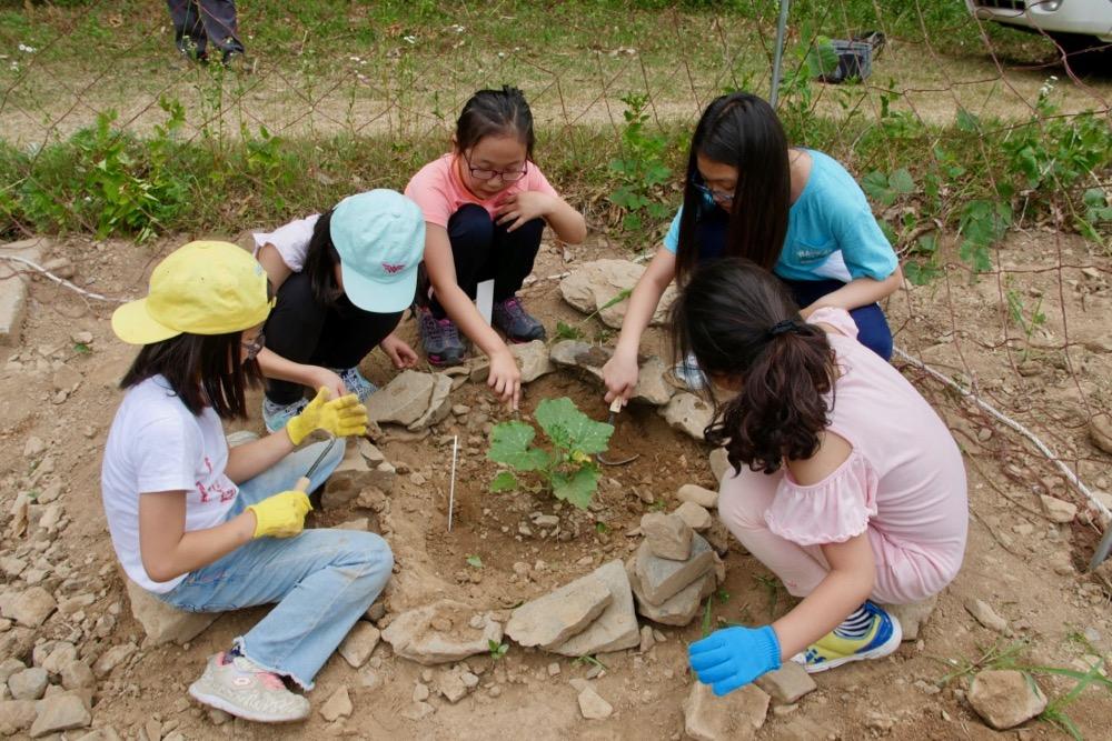 숲속 텃밭 아이들이 텃밭에서 작물을 가꾸고 있다.