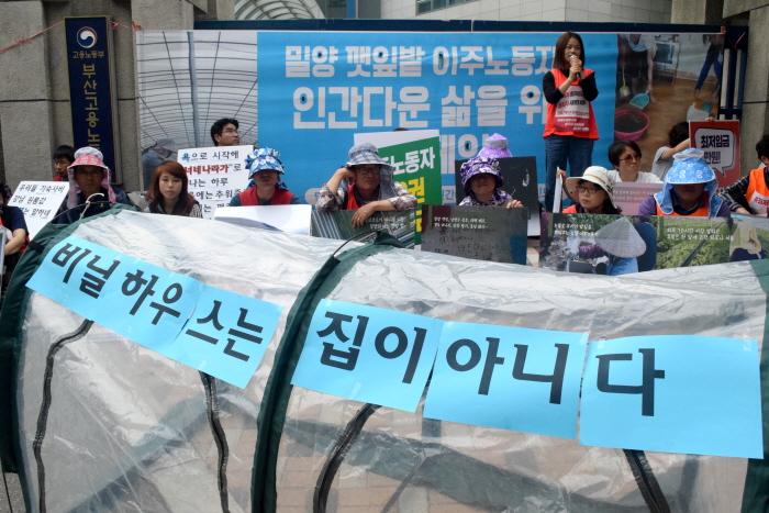 밀양 깻잎밭 이주노동자 인권 캠페인