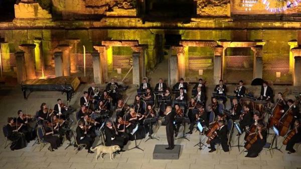 비엔나 체임버 오케스트라 연주 모습