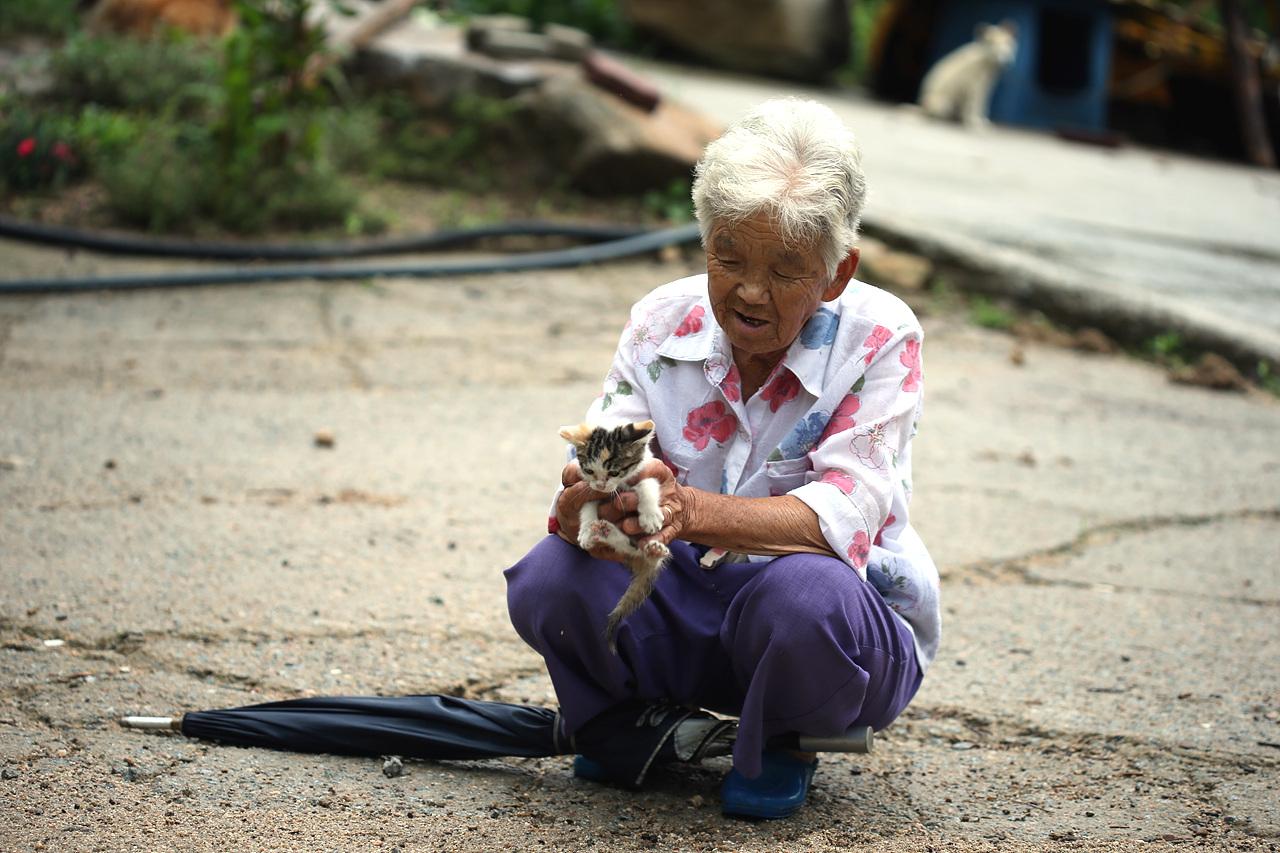 물골 할머니와 새끼고양이 할머니 곁에서 재롱을 피자 할머니가 새끼고양이를 안아준다.