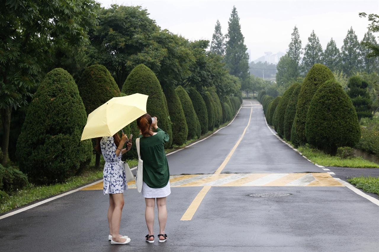 수목원 같은 전남산림자원연구소 풍경. 비가 내린 지난 7월 8일 토요일 오후다.