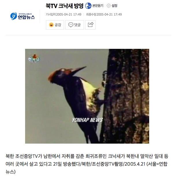 크낙새 관련 보도(연합뉴스 캡쳐화면) .