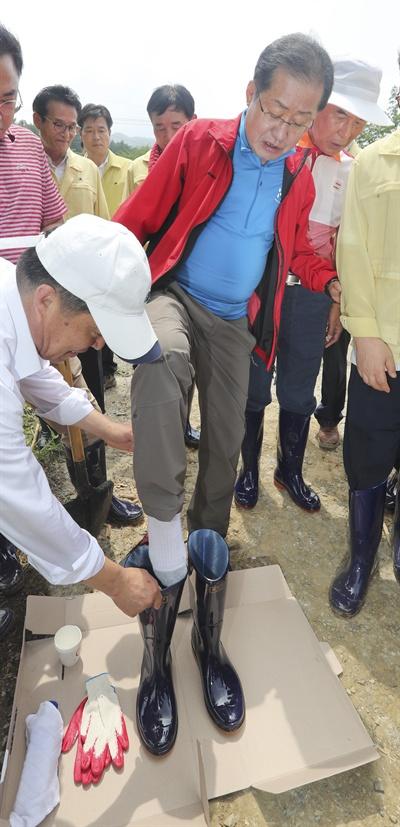 자유한국당 홍준표 대표가 지난 19일 오후 청주시 상당구 낭성면 수해 지역을 찾아 장화를 신고 있다.