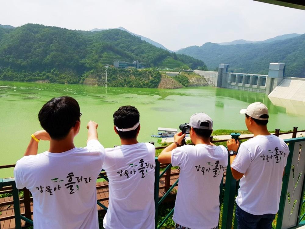 녹조라떼 배양소가 된 영주댐. 온통 초록이다.