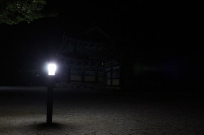 장흥 가지산 보림사 경내, 어둠 속에서 홀로 빛납니다. 해탈처럼 여겨집니다.