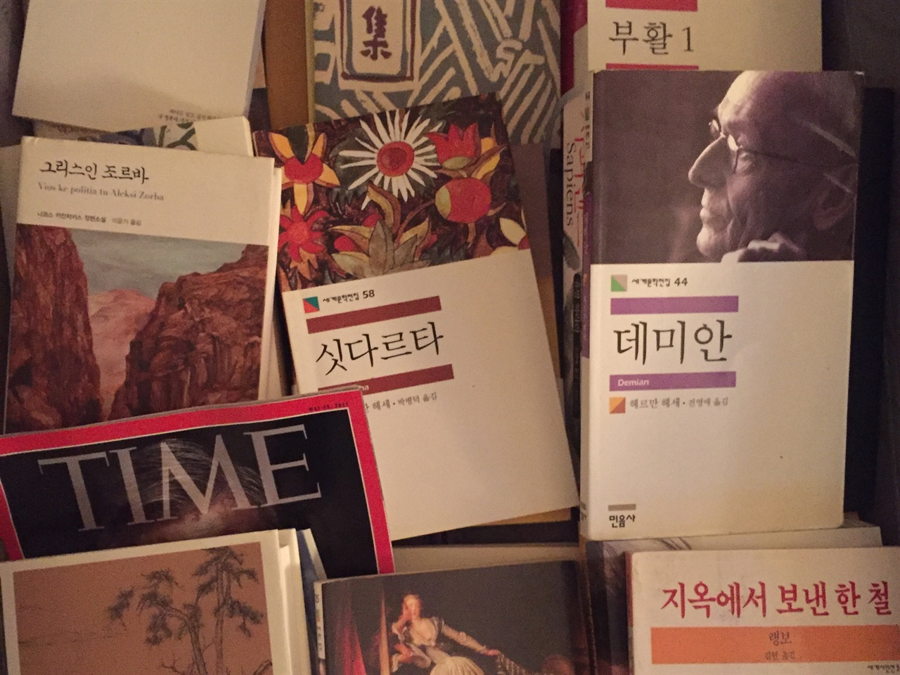 여행용 캐리어에 잔뜩 실어 온 책들