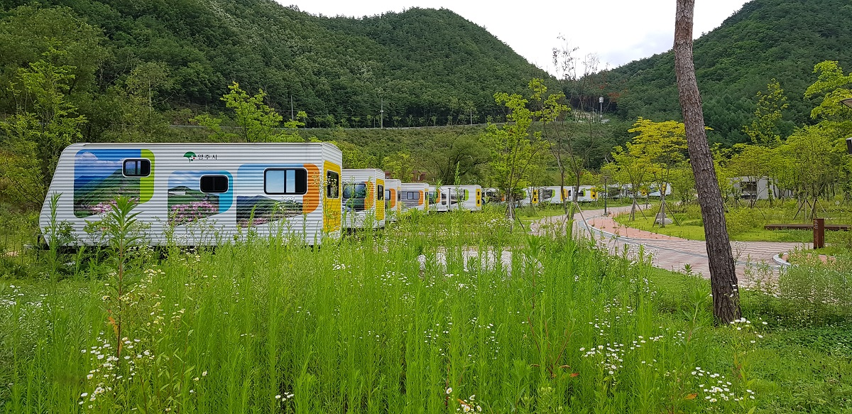빈 카라반이 1년째 도열해있는 오토캠핑장 잔디밭에 잡초가 자욱하게 자라고 있다.