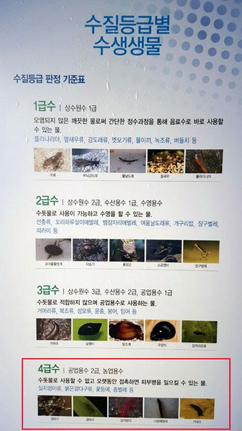 환경부 수질등급별 수생생물 수질등급 판정 기준표에 따르면 실지렁이가 서식하는 곳은 4급수로 표기해 놓았습니다.