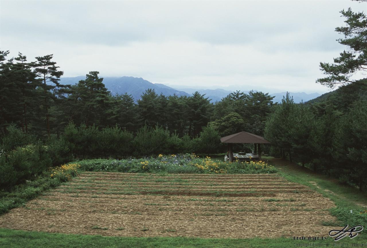 농장의 메인 광장 (LX/CT100)보이는 원두막은 이 곳을 처음 방문할 때 오리엔테이션을 받는 곳이다. 멀리 보이는 산은 설악산. 구름이 없는 날이면 유명한 봉우리들이 한 눈에 병풍처럼 보인다고 한다.