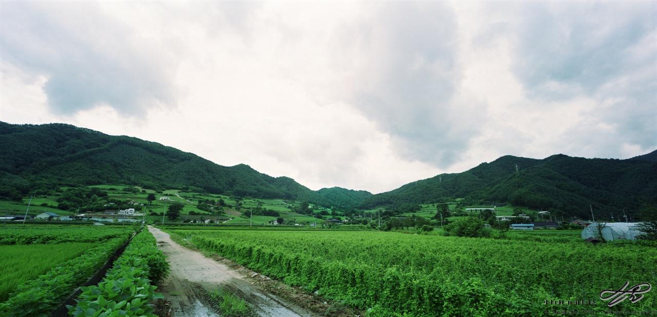 녹색 천지 (SW612/Pro160NS)대관령으로 이동하던 중 잠시 샛길로 빠져 담은 마을을  사진. 구름 밑으로 온통 녹색의 풍경이 펼쳐져 있다.