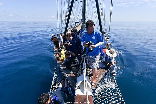 코리아나호가 삼척에서 30마일 떨어진 해상에 이르렀을 때 몇 마리의 고래와 수백마리의  돌고래떼가 나타나자 선장을 제외한 모든 대원들이 카메라를 들고 사진찍기에 여념이 없다.