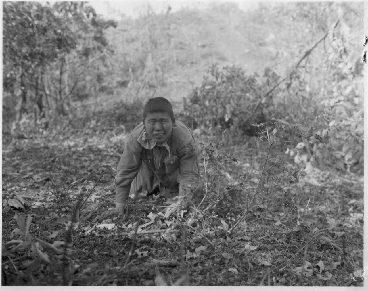 1951. 9. 20. 수풀 속에 숨어있던 한 인민군 병사가 총구 앞에서 짐승처럼 기어 나오면서 투항하고 있다.
