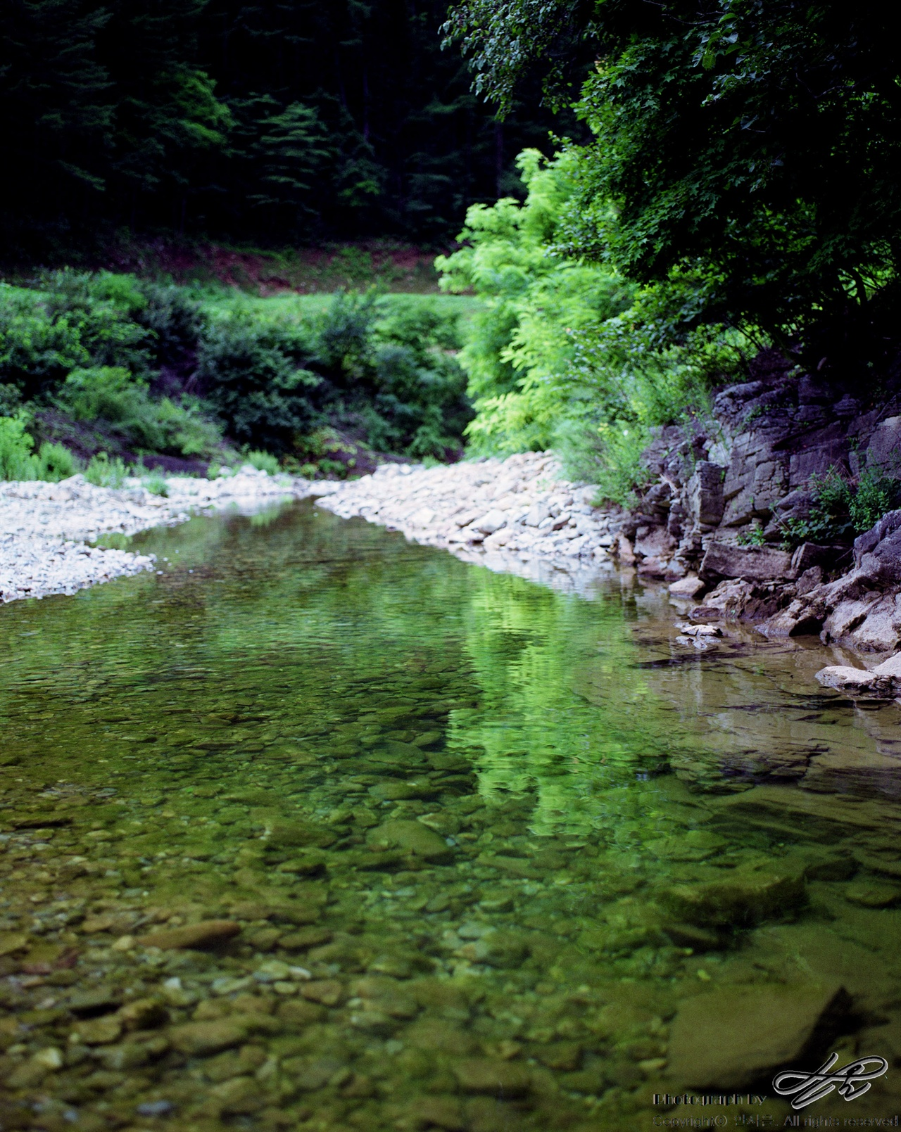 연둣빛 (67ii/Pro160NS)이번 여행의 모든 사진은 후지필름을 사용했는데, 예전부터 녹색의 발색이 화려하다는 평을 받고 있기 때문. 물이 지나가는 길이면서 찻길이면서 탐방로이기도 한 곳.