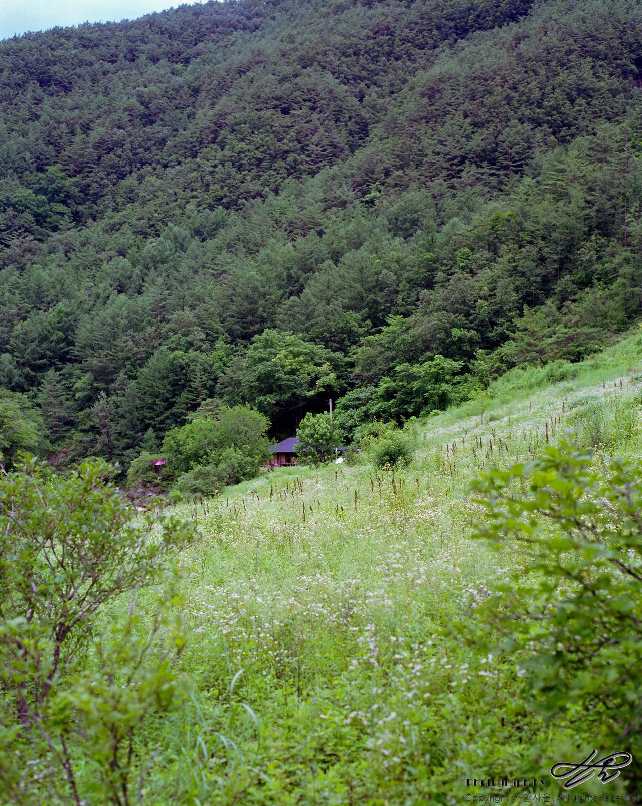 숲 속에 집 한 채 (67ii/Pro160NS)걸으며 발견한 집 한 채가 참 반가웠다.