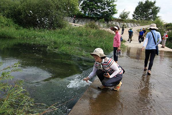 북한에서 내려온 물로 물장난하는 아주머니를 보고 수학여행단을 이끌고 금강산관광을 마친 후북측출입국관리소에  한 시간정도 억류됐던 아픔이 떠올랐다. 아주머니는 20달러도 안내고 북한물을 사용한 셈이다.