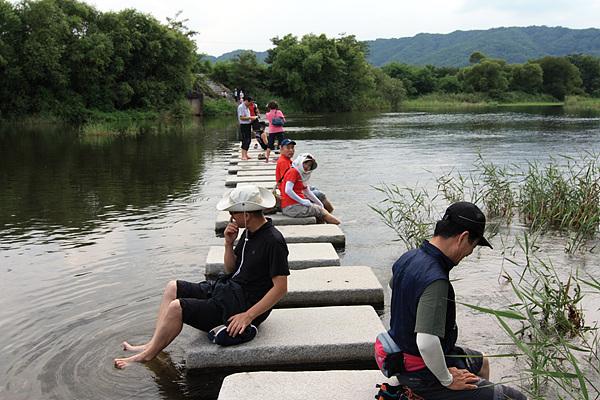 화강의 두루미 쉼터 바로 아래 징검다리를 건너다 물이 너무 시원하고 맑아 발을 담그고 있는 일행들. 통일돼 남북한 주민들이 징검다리에 앉아 도란도란 이야기할 날은 언제일까?
