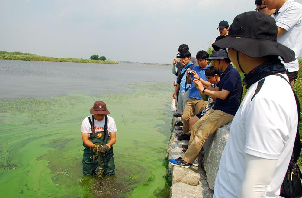 대전가톨릭대학교 대전교구, 청주교구 신학생들이 금강을 찾은 녹조밭에 들어가고 강바닥의 펄을 손으로 파헤쳤다. 당시 일부 학생은 팔등에 붉은 반점이 생기기도 했다.