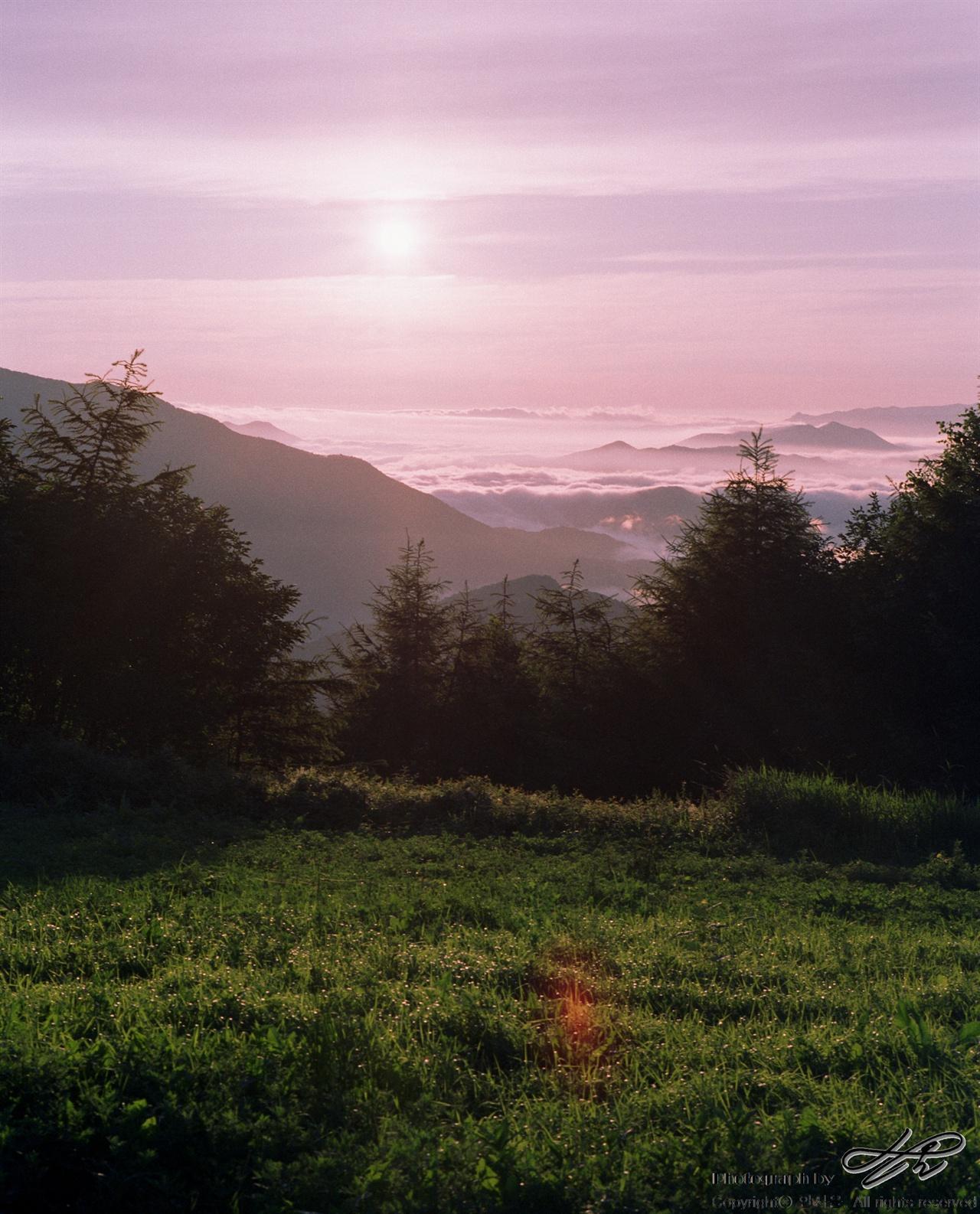 육백마지기들의 일출 (67ii/Pro160NS)분홍빛 하늘과 사광에 비친 녹색 식물, 나무의 실루엣과 하얗게 빛나는 구름들. 사진으로는 다 표현하지 못한 당시의 벅찬 광경이 눈 앞에 선하다.