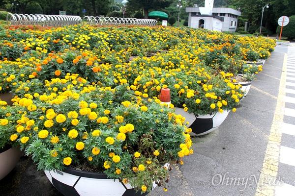 경남도청 정문 앞이 100여개의 대형화분으로 꽉 차 있다.