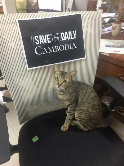 지난 25일 캄보디아 데일리는 '이삭' 이란 이름을 가진 회사 마스코트 고양이 사진을 공식페이스북계정에 올렸다. 댓글에는 언론사 폐쇄에 대항해 싸우는 우리를 고양이 이삭도 지원해주고 있다며, 독자들도 함께 지지해줄 것으로 당부했다.