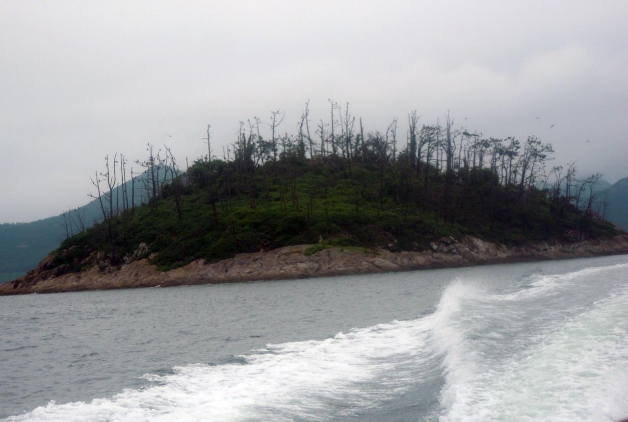 가마우지 섬 풍경