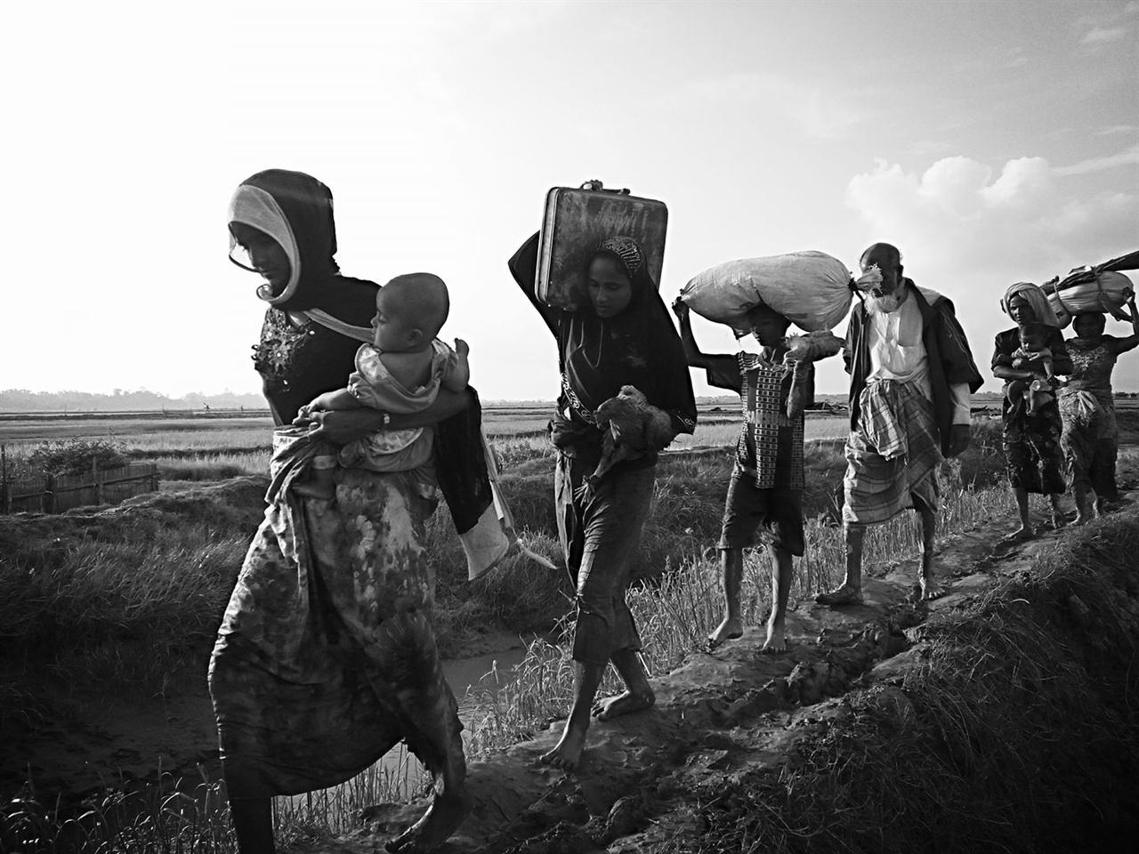 방글라데시 국경을 넘는 로힝야 난민들 지난 8월 25일부터 자행된 미얀마 군부의 학살과 억압으로부터 월경하여 탈출하는 로힝야 난민들의 행렬입니다.