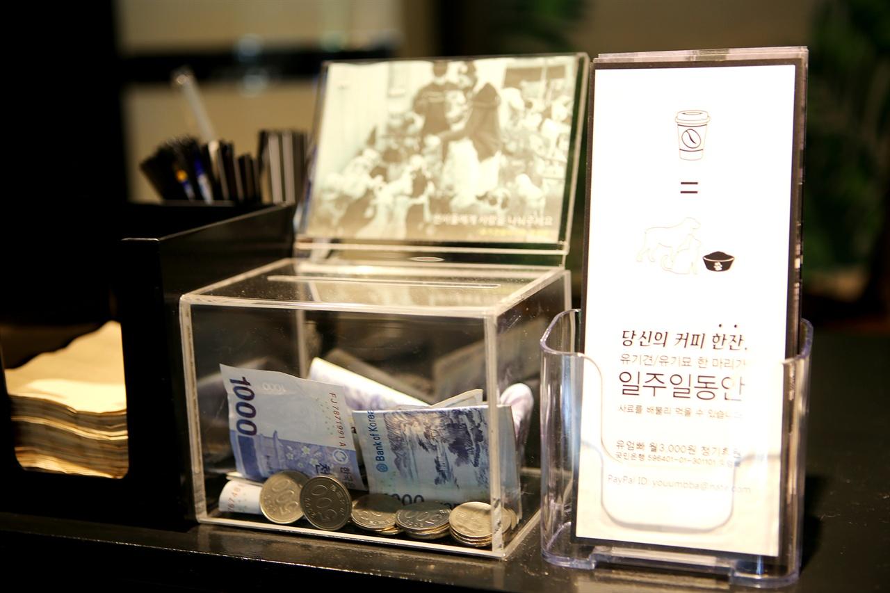 반려동물 서점 '동반북스' 유엄빠 모금함