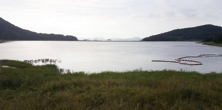 무술목 바다호수 전경 육지쪽에서 둑이 있는 바다방향을 보고 촬영했다.사진 정 중앙이 바다를 막은 제방이다.