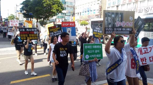 지난 2일부터 매주 토요일 2시, '구포동문시장' 앞에서 구포가축시장 폐쇄, 개고기 문화 근절을 위한 집회가 열리고 있다.