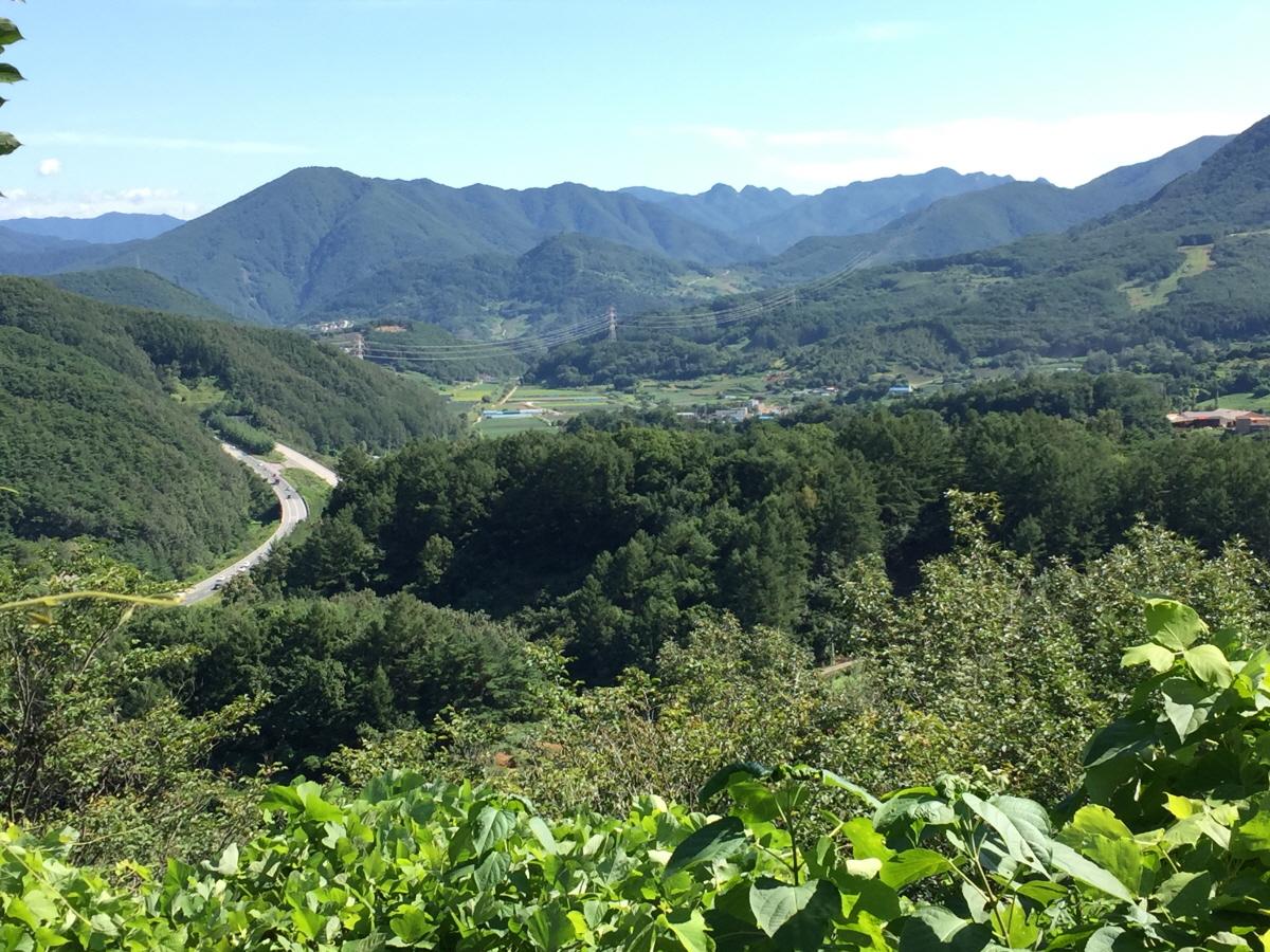 금수산과 남한강으로 둘러싸인 적성면
