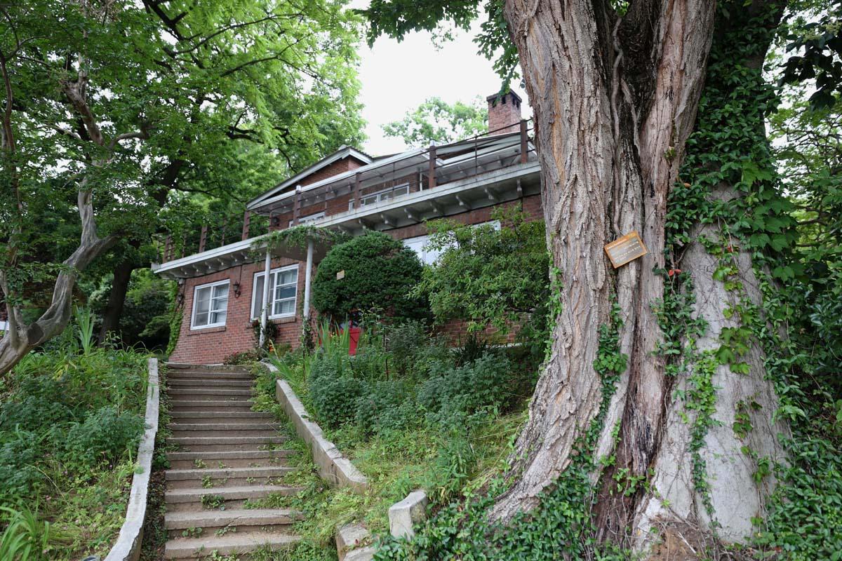 유수만 선교사 사택. 고목과 어우러져 더욱 멋스럽다. 광주 양림동의 아름다운 건축물 가운데 하나다.
