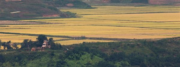 지난 2013년 추석 연휴 당시 경기도 파주시 오두산 통일전망대에서 촬영한 황해북도 개풍군의 노란 들판의 모습.