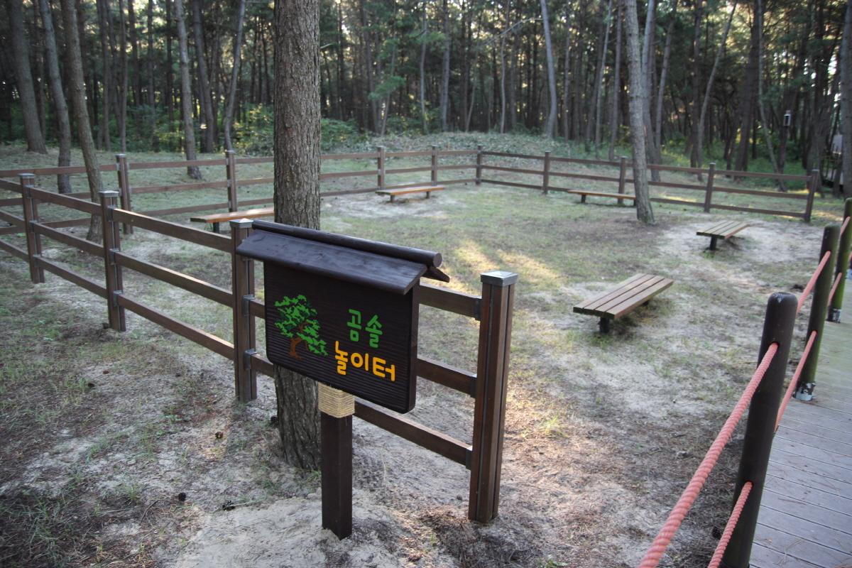 기지포 해수욕장의 곰솔 밭에 마련된 놀이터에 의자들이 가지런히 쉼을 찾는 이들을 기다리고 있습니다.
